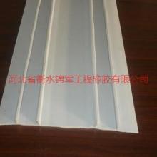 供应沧州塑料止水带厂家图片