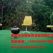 江津区塑料人造草坪图片