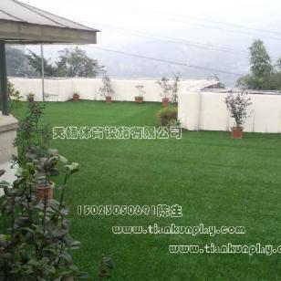 重庆人造草坪怎么卖图片