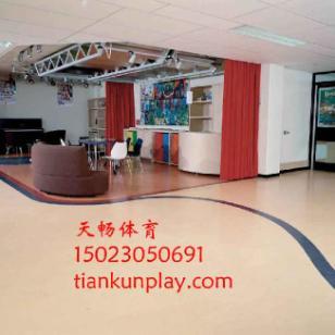 渝中区室内PVC运动地板图片
