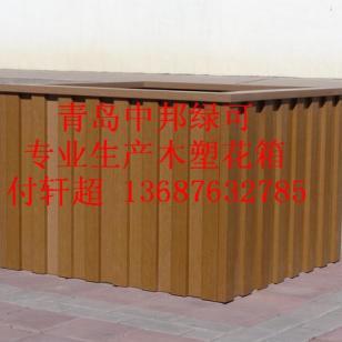 青岛崂山区专业生产花箱图片