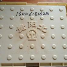 供应贵阳高铁RPC盖板塑料模具厂家-高铁RPC盖板模具供货商图片