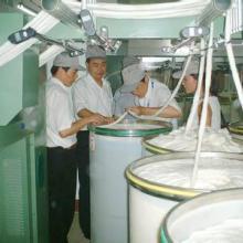 供应批量5支到12支棉晴气流纺纱批发