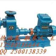 惠州柴油泵图片