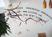供应设计策划苍穹是主力墙绘公司