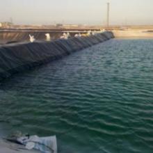 供应新疆复合土工膜厂家 山东防渗膜 防水毯厂家 公司产品质量稳定可靠批发