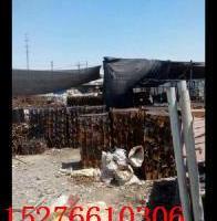 供应新疆顶托批发18290880579 新疆顶托批发低价大量现货出售