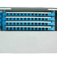 三亚光纤跳线理线架图片