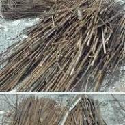 惠阳区工业废钢铁打包铁回收价格图片