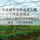 供应【普通温室大棚】广州普通温室大棚,湖南农用温室大棚