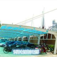 广州遮阳停车棚图片