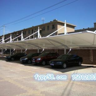 广州膜结构汽车棚图片