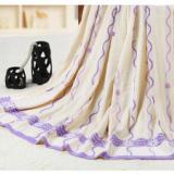 供应双人毛巾被/纯棉双人毛巾被/2.02.2米双人毛巾被