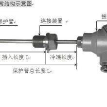 供应WZP热电阻K分度热电偶,WZP230/231温度传感器批发