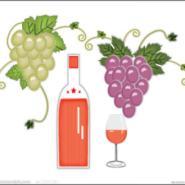 南非葡萄酒进口代理上海报关图片