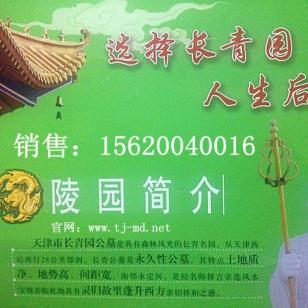 天津长青公墓销售处图片
