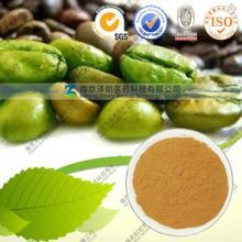 供应绿咖啡豆提取物厂家生产批发