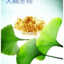 供应用于清热凉血,消的余甘子提取物纯天然提取100%水溶批发