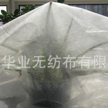 供应农用无纺布www.sdhuaye.com