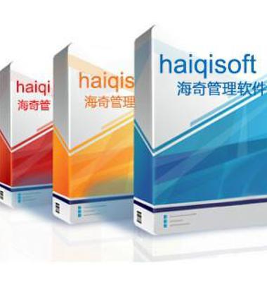 海奇连锁店管理软件图片/海奇连锁店管理软件样板图 (2)