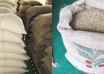 进口咖啡豆直销批发厂家图片
