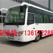 楚风城市客车教练车图片
