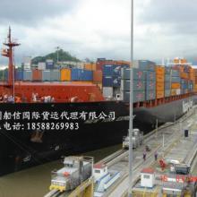 供应汕头到福州玩具运输专线船信海