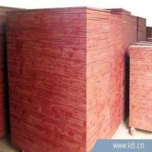 供应建筑模板1.4厘36板批发