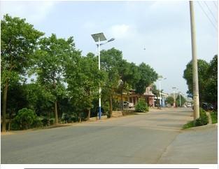 供应湖北太阳能路灯