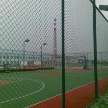 供应篮球场地围网篮球场地截面图篮球场地围网与灯杆照明【沧州双龙体育】批发