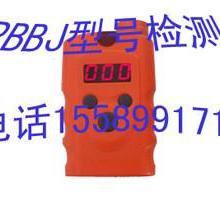 二氧化碳检测仪RBBJ  二氧化碳报警器  二氧化碳检测仪