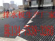 PE排水板