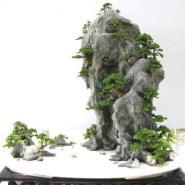 上海假山盆景制作图片