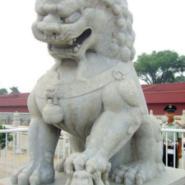 哪里的石狮子最好图片