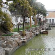 上海龟纹石湖岸图片