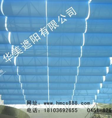 FTS天棚帘图片/FTS天棚帘样板图 (2)