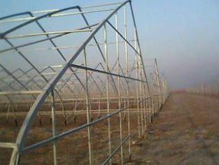供应兰州新型农业温室大棚图片