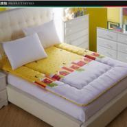 最新榻榻米活套床垫床褥子地垫学生图片
