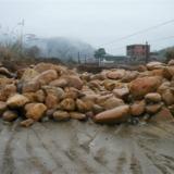 供应江西萍乡黄蜡石 江西萍乡黄蜡石质地 江西客户好评黄蜡石