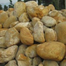 新余黑鹅卵石新余雨花石小鹅卵石  大量鹅卵石批发