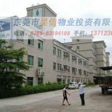 找横沥厂房出售东莞横沥厂房出租-昊信工业一流的服务图片