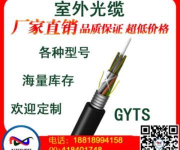 广州光缆厂家,两芯单模光缆生产厂家,光缆gyta是什么意思厂家批发图片