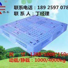 供应深圳塑料托盘厂家/深圳塑料栈板价格批发