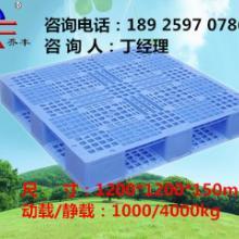湛江塑料托盘厂家/塑料卡板