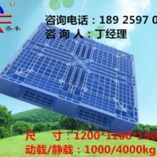 供应南昌塑料卡板/赣州塑料托盘厂家