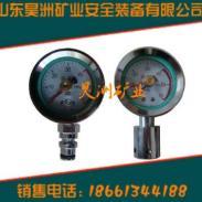 矿用支架双针压力表图片