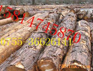 供应木材进口报关清关报检价格图片