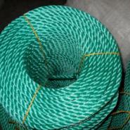泰安聚丙烯绳聚乙烯绳厂家图片