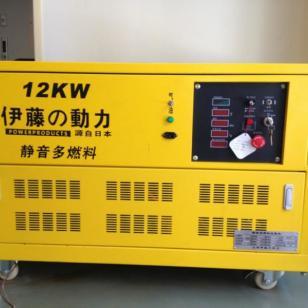 12千瓦单三相可移动发电机图片
