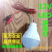 12Vled球泡灯led节能灯泡图片